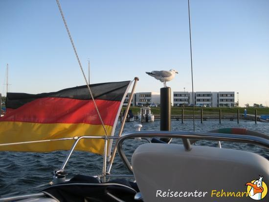 Piratennest - Bild 1